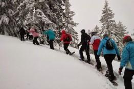Zagórz Atrakcja Wypożyczalnia rakiet śnieżnych PAWUK Wypożyczalnia